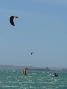 GALLERY KITING  (26)